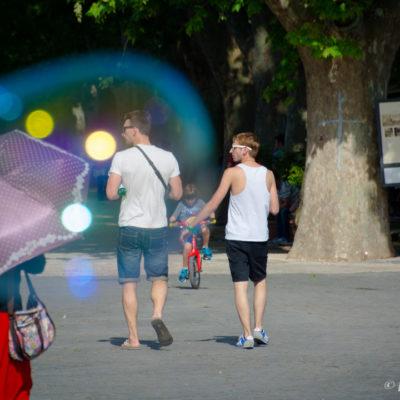 L'amore è un diritto - Selezionata